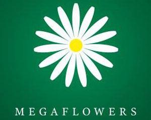� ������ ��������� ����������� ����������������� �������� Megaflowers