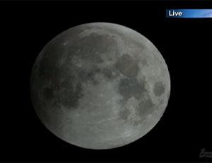 знакомства 14 лунного дня