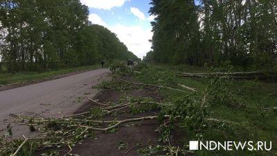 Шквалистый ветер оставил без света 14 тысяч уральцев, в том числе родное село Бориса Ельцина