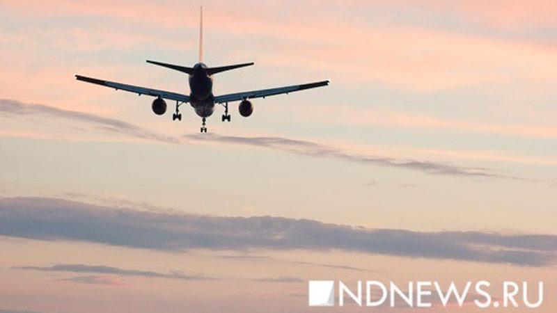 Аэропорт вГенуе изменил правила безопасности ради соуса песто