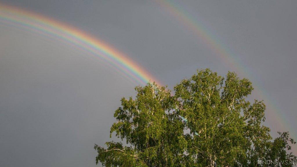 Напонедельник вЧелябинской области объявлено штормовое предупреждение