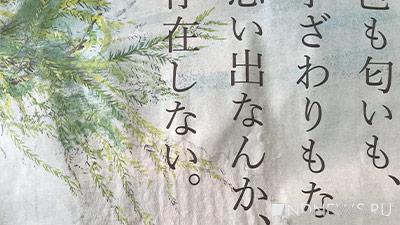 Китайский музей предложил разгадать древние иероглифы за вознаграждение