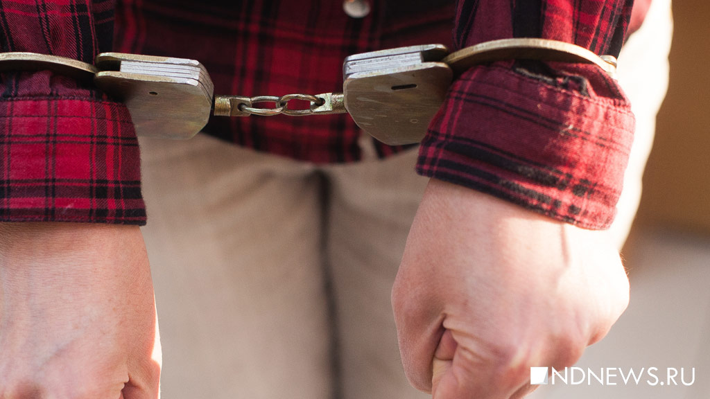 ВГамбурге окончено расследование поделам арестованных вовремя G20 граждан России