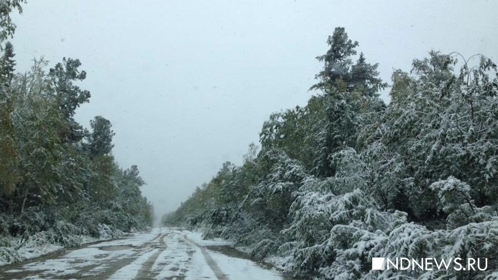 ВСвердловской области выпал снег, вЧелябинской области безумно похолодает