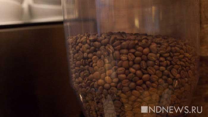 К 2050 году площадь кофейных плантаций сократится на три четверти