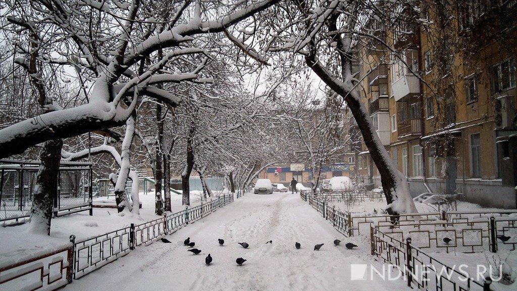 РАН: Зима в столице предполагается теплой, с воздействием арктического воздуха