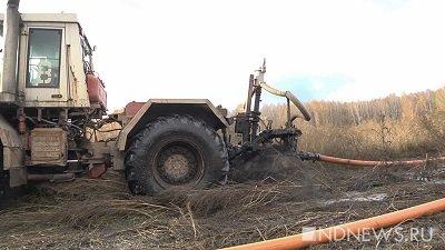 ВСаках производитель мясопродуктов возместил 600 тыс руб. «экологического» ущерба