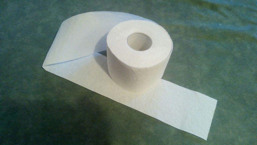 ВГолландии будут строить дороги изиспользованной туалетной бумаги