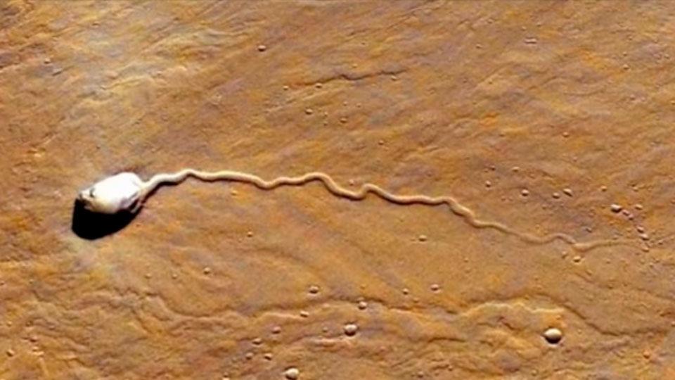 Ученые обнаружили наМарсе огромный НЛО ввиде сперматозоида