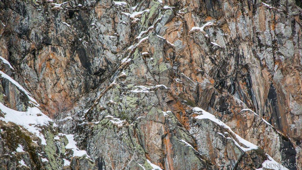 ВКрыму вближайшие сутки выпадет 1-ый снег