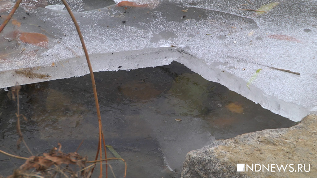 Провалившегося под лед мужчину спас работник гостиничного комплекса «Рамада»