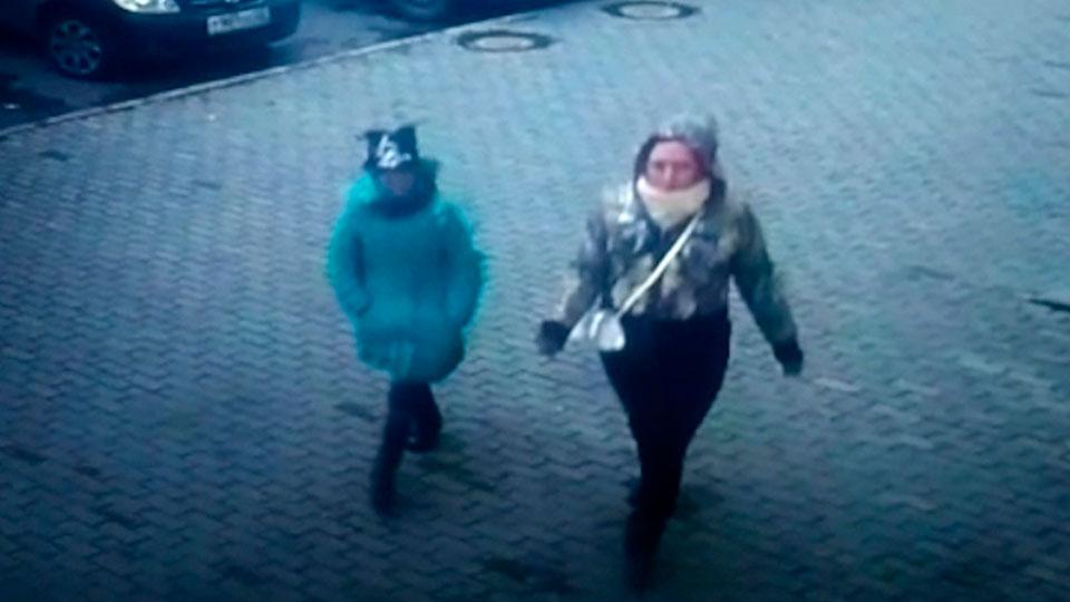 Полицейские вБарнауле разыскивают девочку схомячком, обкрадывающую квартиры