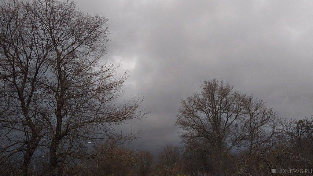 В московском регионе объявлено штормовое предупреждение