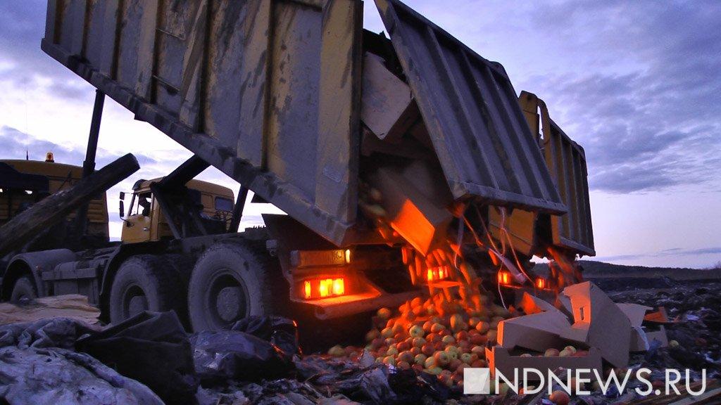 Объем всей уничтоженной «санкционной» продукции превысил 19 тыс. тонн