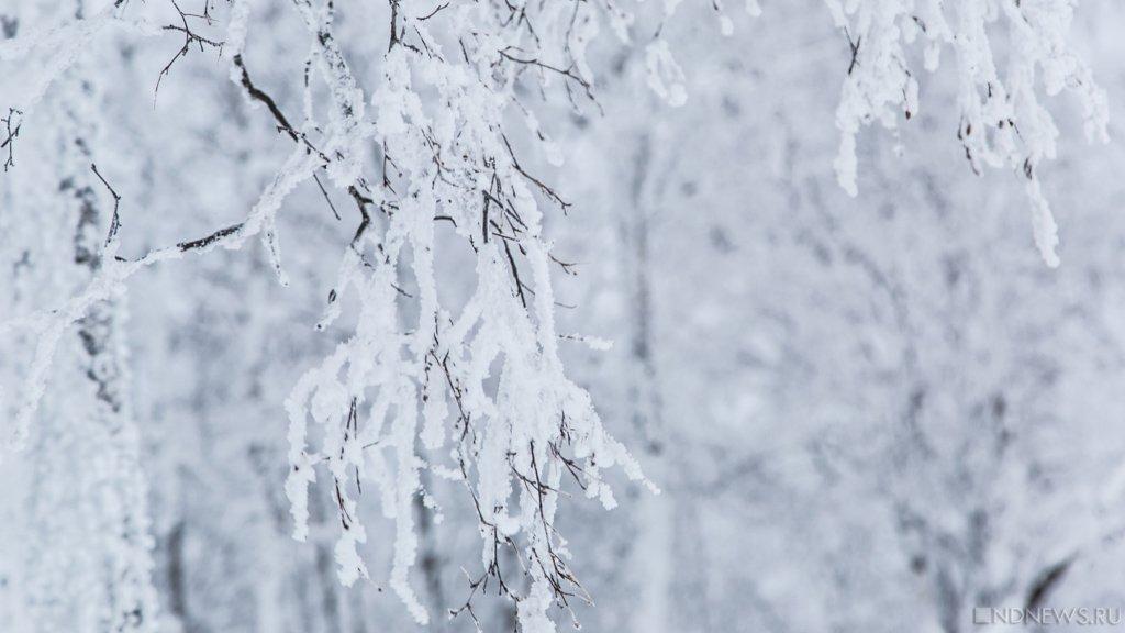 Из-за мороза в школах отменили занятия