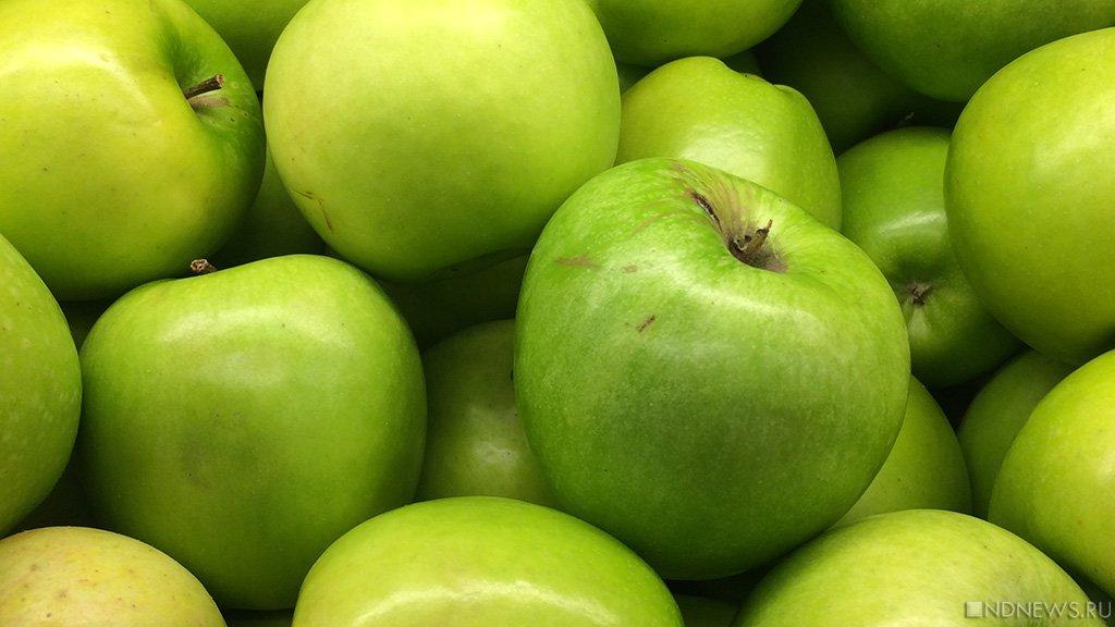 На Южном Урале обнаружили десятки тонн шпика и яблок из Европы