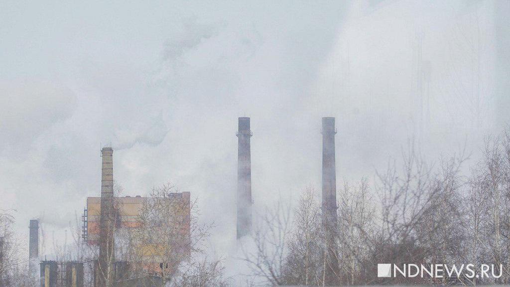 Малика Гайсина обвинили в тайном владении 170 предприятиями