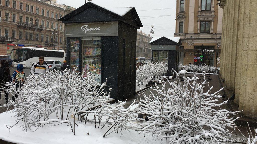 Челябинская школьница сбежала к незнакомцу в Питер