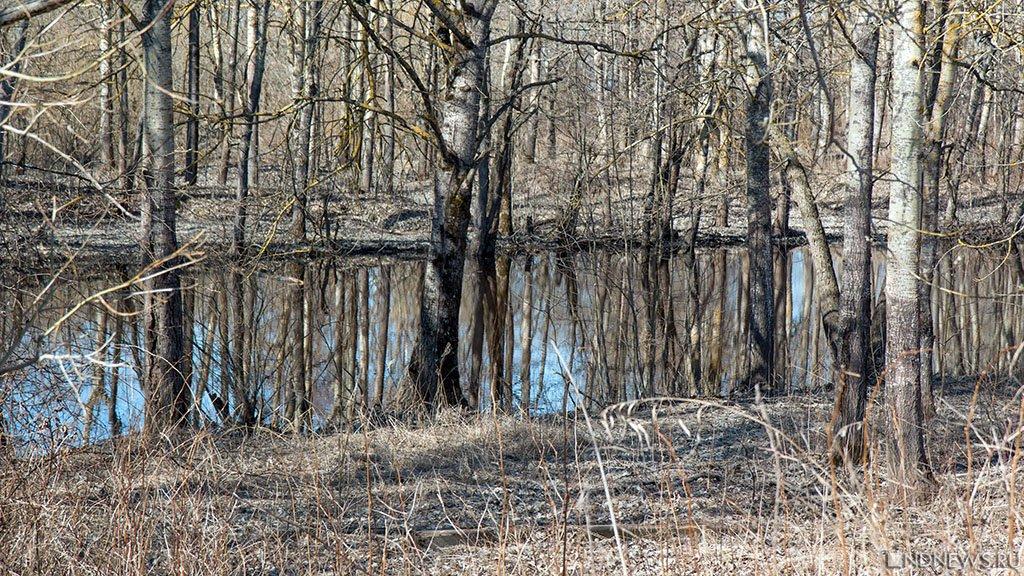 Весна: на Южном Урале ожидаются положительные температуры