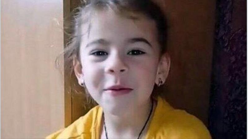 В Сочи более тысячи человек ищут пятилетнюю девочку / Возбуждено уголовное дело