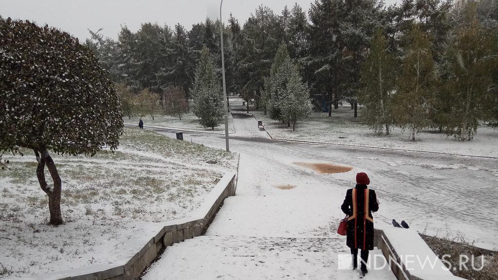 Глобальное потепление принесет в Россию экстремальные погодные явления