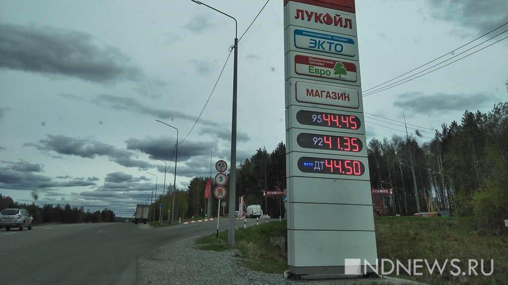 И санкций не надо: сельхозпроизводители понесли огромные потери от подорожания топлива