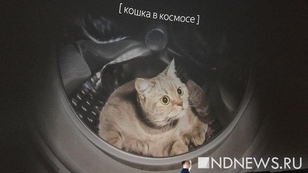 Мемы оказались под угрозой запрета