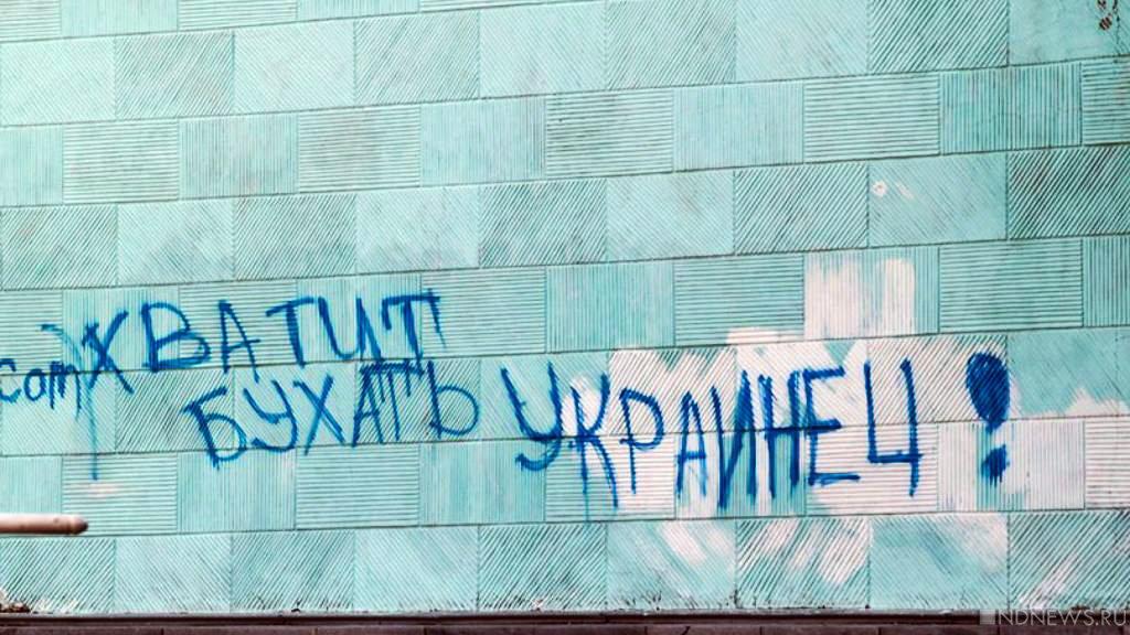 Ну, здравствуй, брат! На Украине предложили заселить Крым и Донбасс арабами и латиноамериканцами