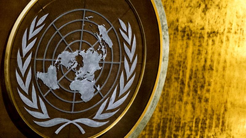 ООН потребовала от Украины закрыть скандальный сайт «Миротворец»