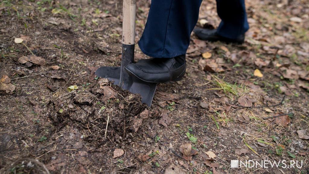 В Санкт-Петербурге нашли тело закопанной в землю по шею женщины