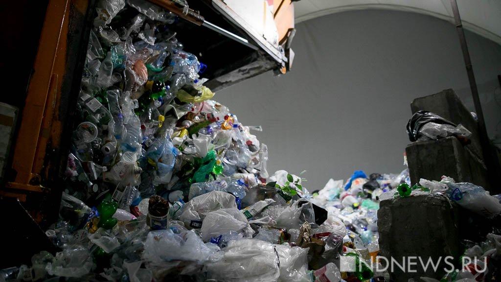Половина регионов РФ завершит мусорную реформу к 2024 году, остальные – к 2030-му