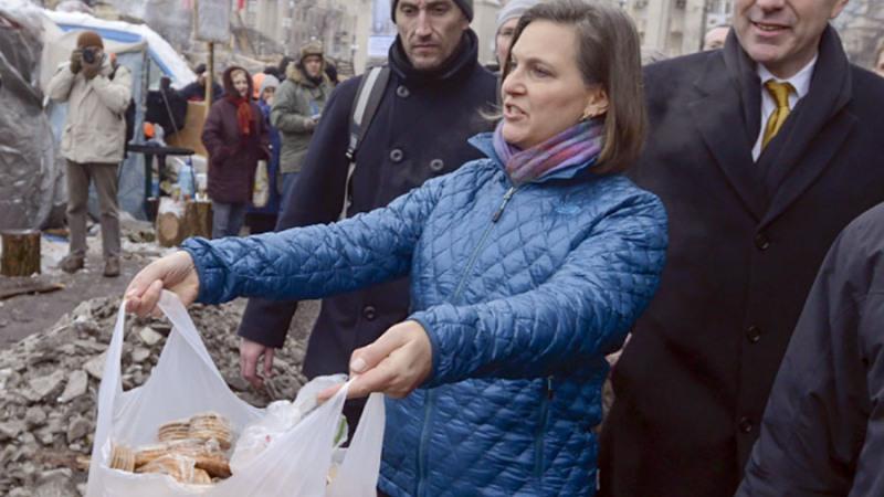 Киев требует придать спецпредставителю США на Украине статус Виктории Нуланд