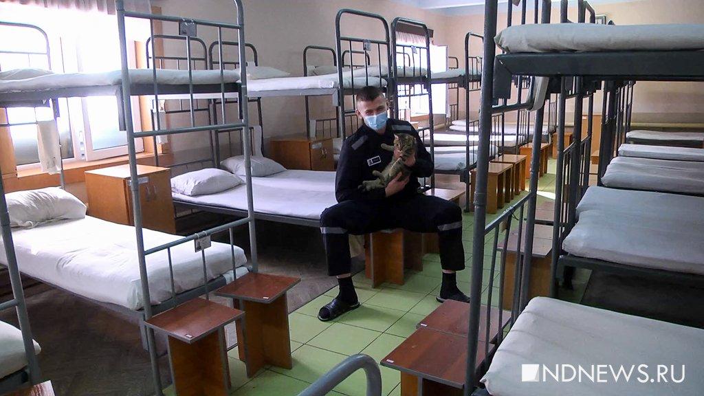 В Свердловской области не хватает заключенных, чтобы отправлять их на БАМ