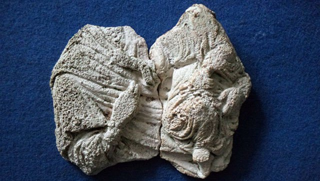 ВКерчи найдены фрагменты барельефа Богородицы с малышом наруках