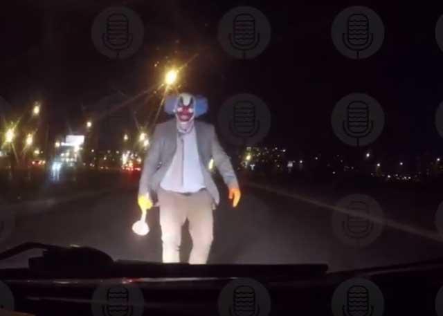 Питерского клоуна свантузом казаки отловят ипристроят наконюшню