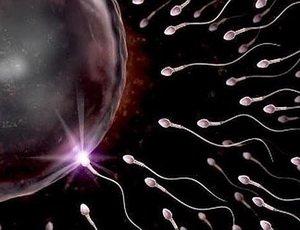 Вкусовые свойства спермы