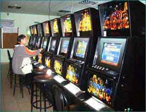 Мистер твистер в казино бесплатные игровые автоматы на нокиа5230