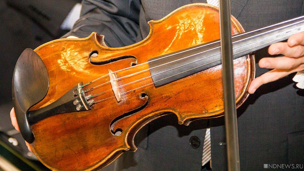 В Санкт-Петербурге украли скрипку стоимостью 3 тысячи евро