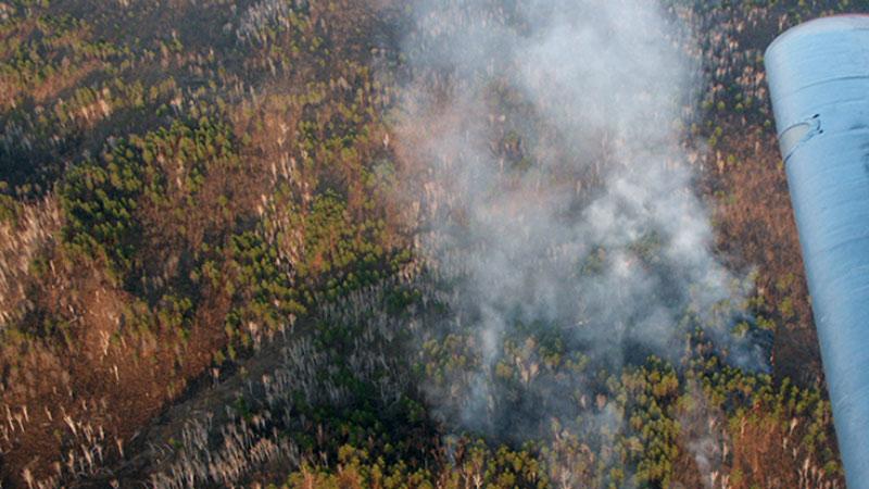 Количество лесных пожаров в Забайкалье увеличилось в три раза