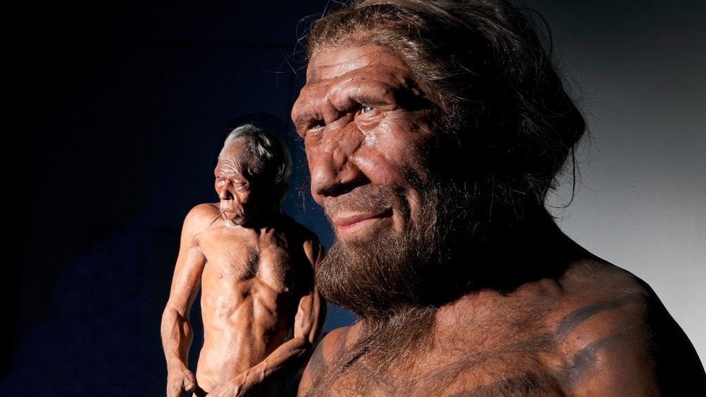 жизнь картинки первого современного человека том