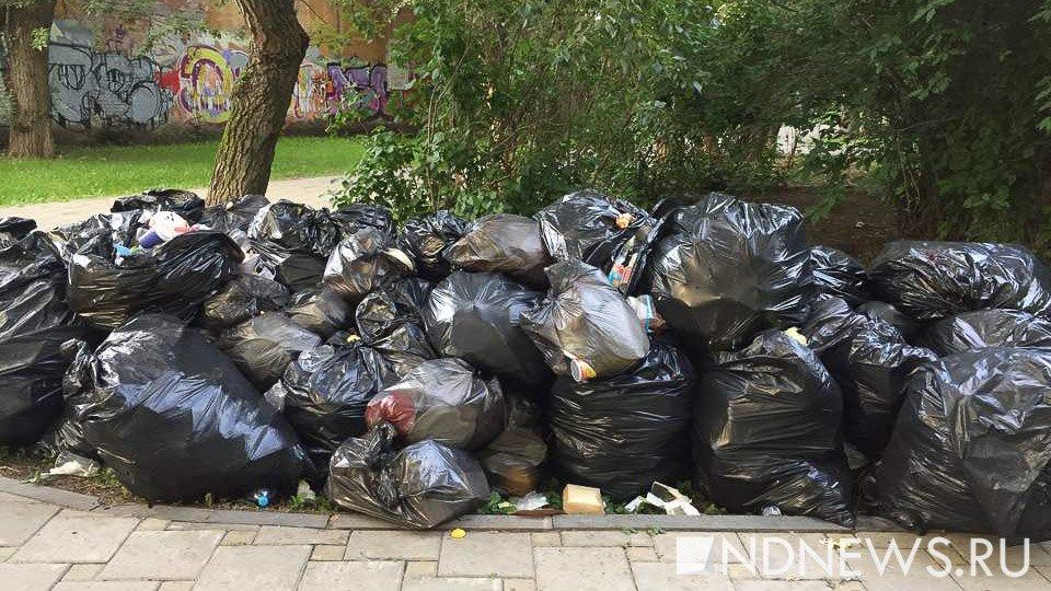 В Екатеринбурге продолжается генеральная уборка