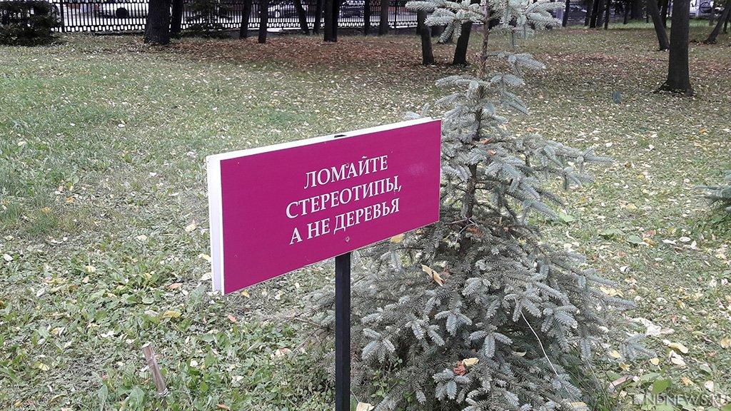 В центре Челябинска вспыхнул очередной конфликт между жителями и застройщиком