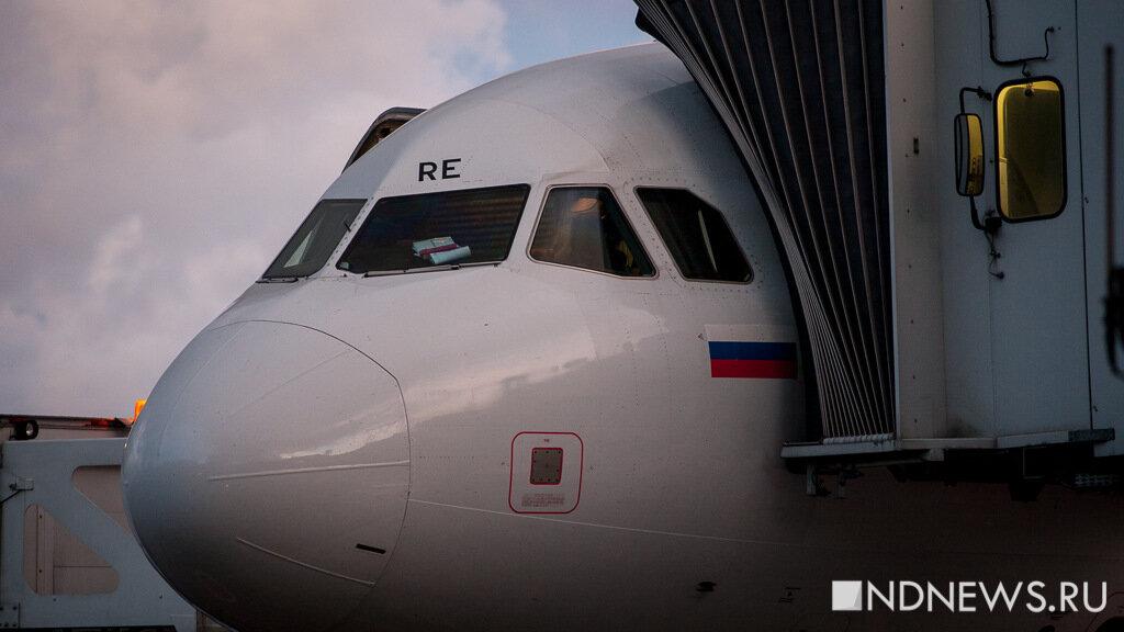 В Минводах задержан вылет «Боинга» в Москву: подозревают попадание птицы в двигатель