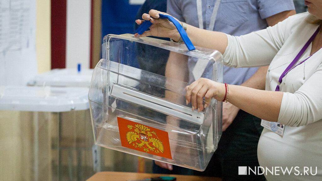 «Вы их тупо толкаете на силовые методы»: Госдума запретила участвовать в выборах нескольким категориям россиян