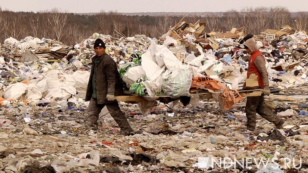 В России станет вдвое меньше мусорных полигонов. В РЭО объяснили, кто должен ими заниматься