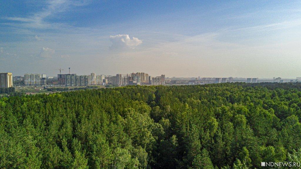 Интересное совпадение: челябинские «соколы Жириновского» оказались соседями в городском бору