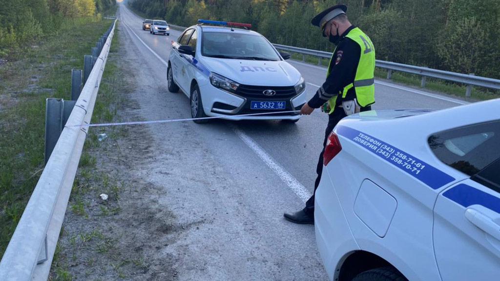 На свердловской трассе при столкновении легковушки с лосем пострадали 4 человека (ФОТО)