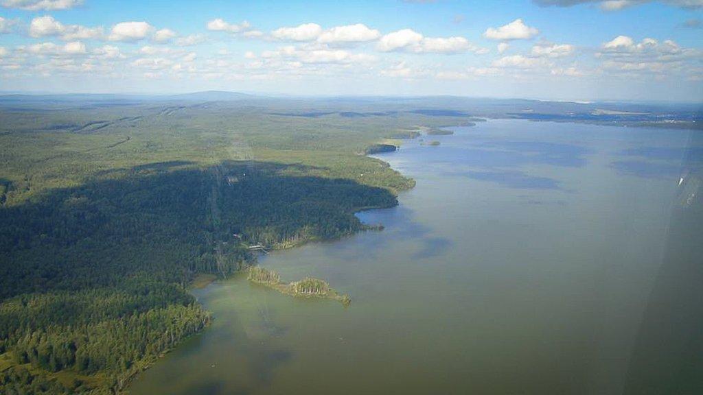 Новый День: В пруду, снабжающем водой Нижний Тагил, снова расплодились ядовитые водоросли